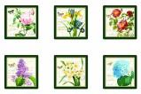 Набор из 6 подставок под стаканы Цветы